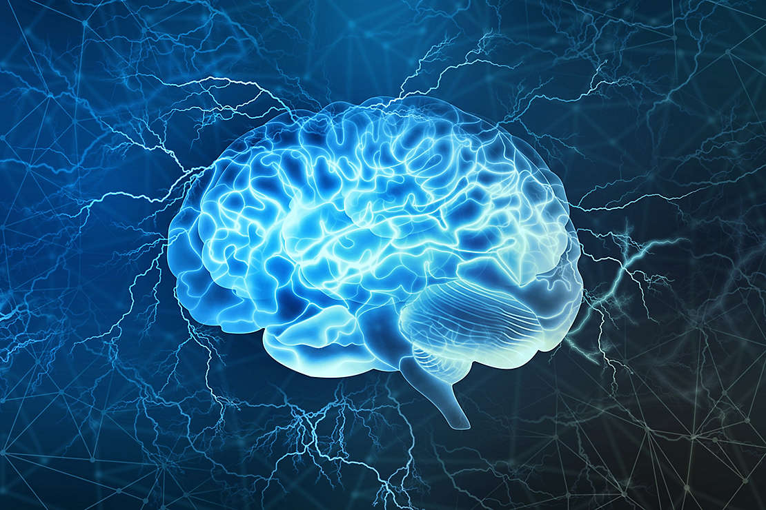 Activate your brain health