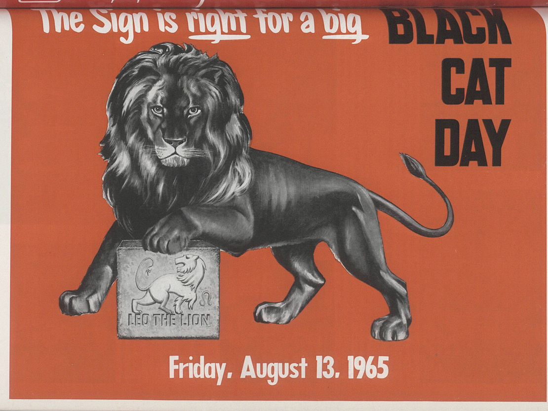 black cat day ad