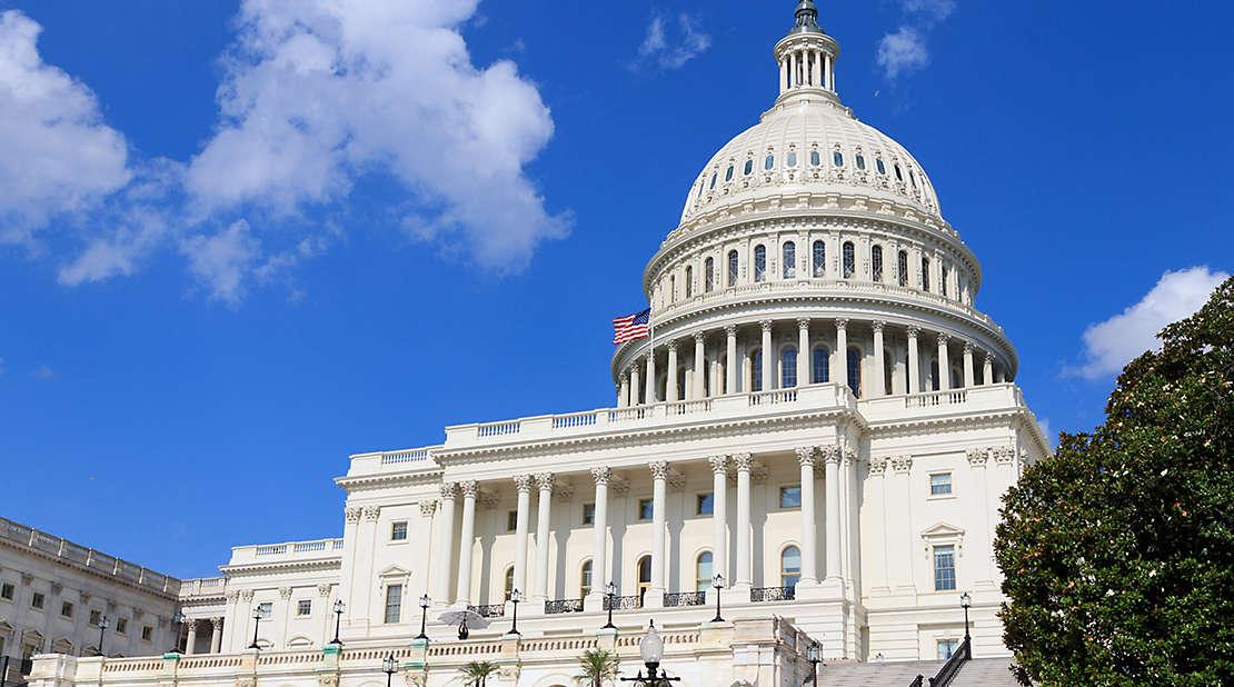 congress/ capitol building
